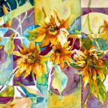 Geometric Sunflowers